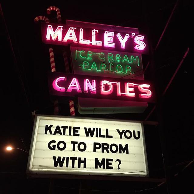 No pressure Katie